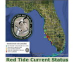 Click to go to the Florida Fish and Wildlife Research Institute Red Tide Current Status and Map