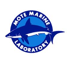 Click to go to Mote Marine Lab's website for red tide facts and current status info.