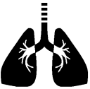 People with severe or chronic respiratory conditions (such as chronic lung disease or asthma) may be more sensitive.